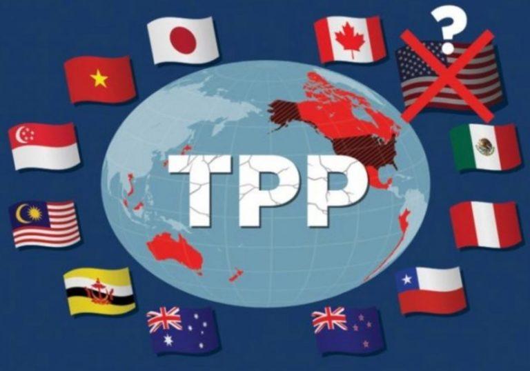 TPP11の参加国はどこ?日本のメリットやデメリットを2分で解説‼